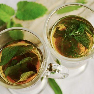 Dlaczego gorąca herbata jest lepsza w upalne dni niż zimna woda?
